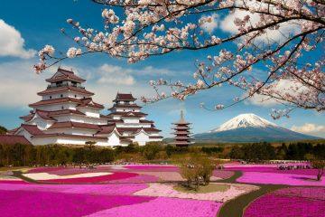 Parks-Mountains-Pagodas-Sakura-Volcano-Branches-Aizuwakamatsu-Castle-Tsuruga-Castle-Fukushima-Mount-Fuji-Cities-Japan-Wallpaper-Widescreen-HD-1680x1050